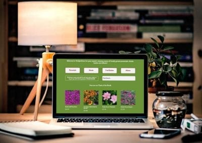 Plant E-Commerce website design